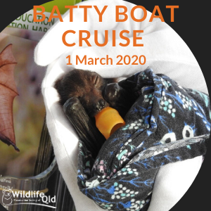 Batty Boat March 2020 Cruise