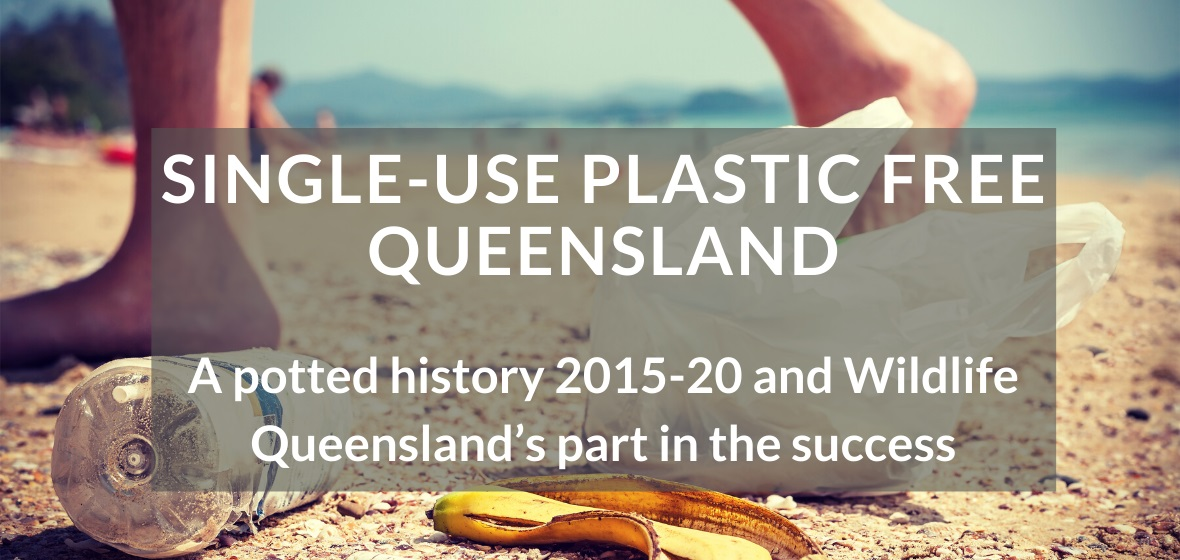 Single-use plastic free Queensland