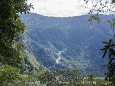 Eungella National Park